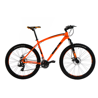 bicicletta hogan