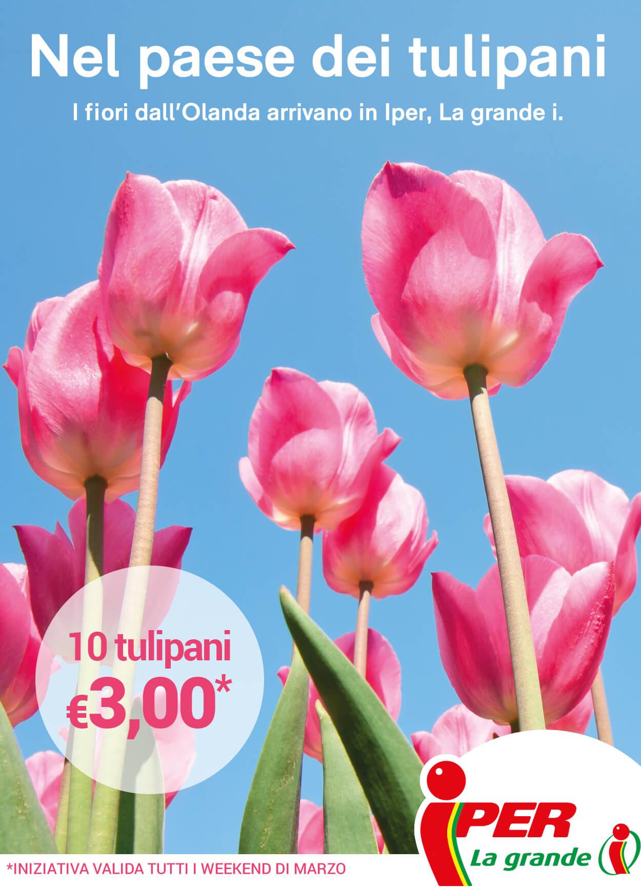 Tulipano volantino offerte beautiful volantino ipersoap a for Volantino offerte despar messina